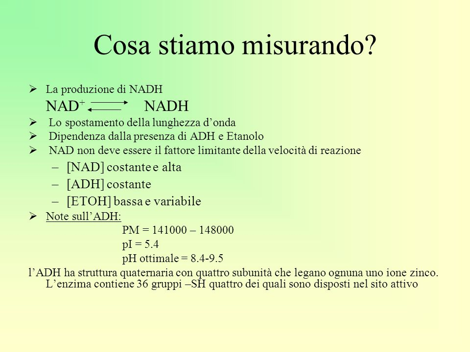 Cosa stiamo misurando [NAD] costante e alta [ADH] costante